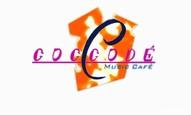 Coccodé Cream
